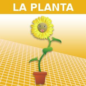 LA PLANTA